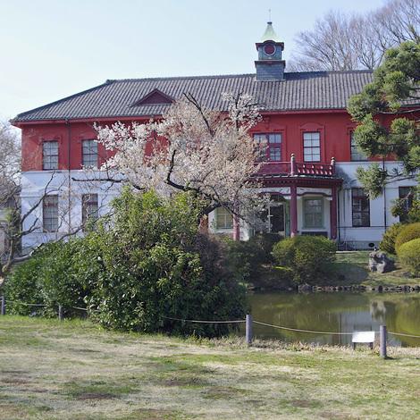 koishikawa-shokubutsuen2.jpg